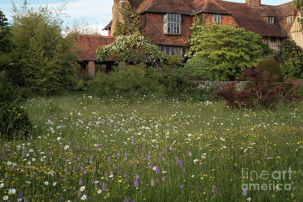 Photograph - Wildflower Meadow, Great Dixter by Perry Rodriguez