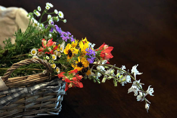Photograph - Wildflowers In A Basket On Black by Sheila Brown