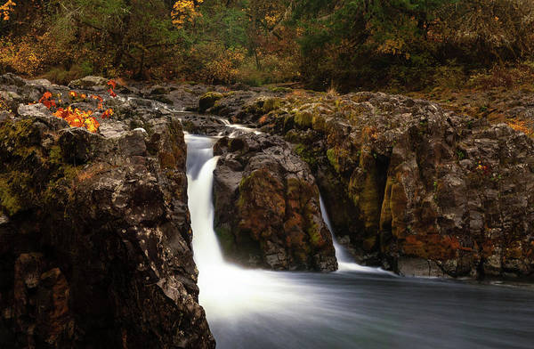 Photograph - Wildwood Falls Oregon 2 by Lara Ellis