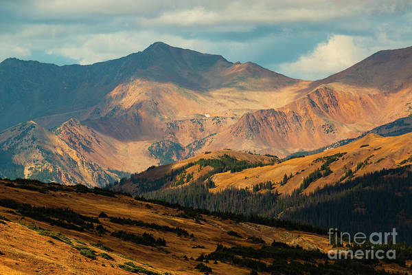 Photograph - Willdlife In Rocky Mountain National Park by Steve Krull