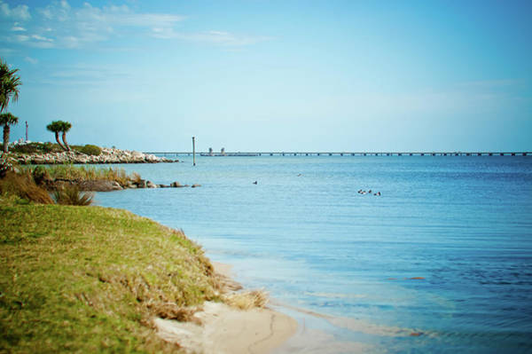 Gulf State Park Photograph - William Bantram Park by Sharondipity Photography