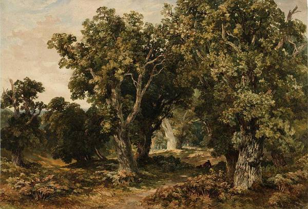 Wall Art - Painting - William Bennett In Richmond Park 1852 by MotionAge Designs
