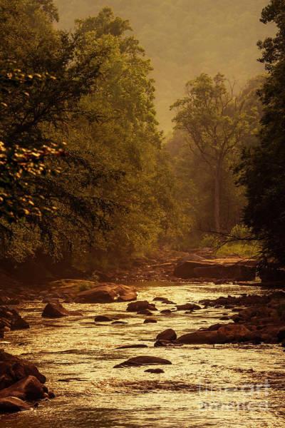Photograph - Williams River At Sundown by Thomas R Fletcher