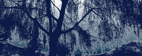 Wall Art - Mixed Media - Willow In Blue by Marinela Feier