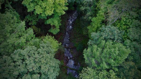 Photograph - Willow Run Creek by Ants Drone Photography