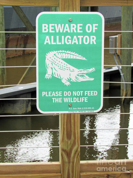 Photograph - Wilmington North Carolina Alligator Warning Sign by Roberta Byram