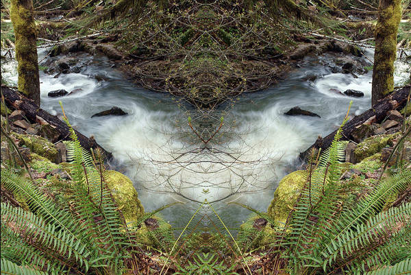 Photograph - Wilson Creek Mirror Art 2019 #1 by Ben Upham III