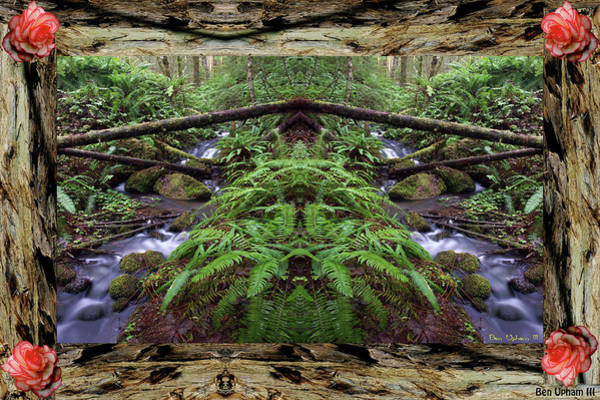 Photograph - Wilson Creek Mirror Art 2019 #2 With A Redwood Frame by Ben Upham III