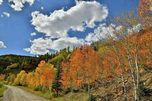Photograph - Wilson Mesa Ranch Loop Road In Fall by Ray Mathis