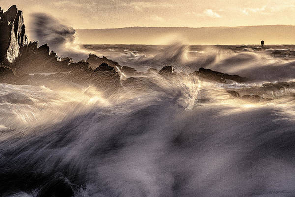 Photograph - Wind Driven Surf At Quoddy by Marty Saccone