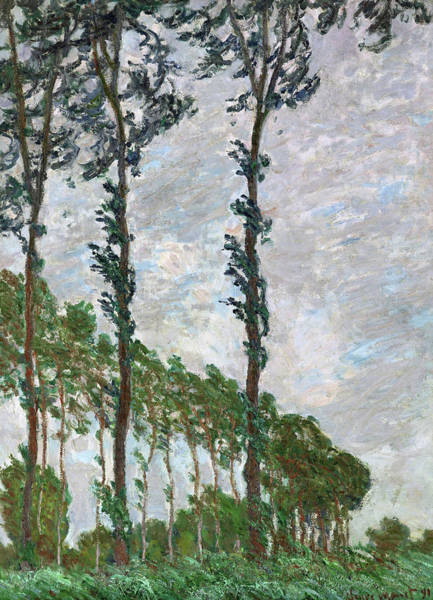 Wall Art - Painting - Wind Effect, Series Of The Poplars - Digital Remastered Edition by Claude Monet