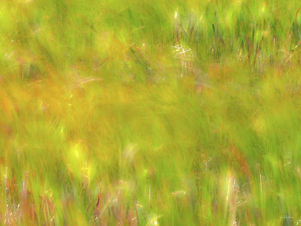 Photograph - Wind Painting 4 by Leland D Howard