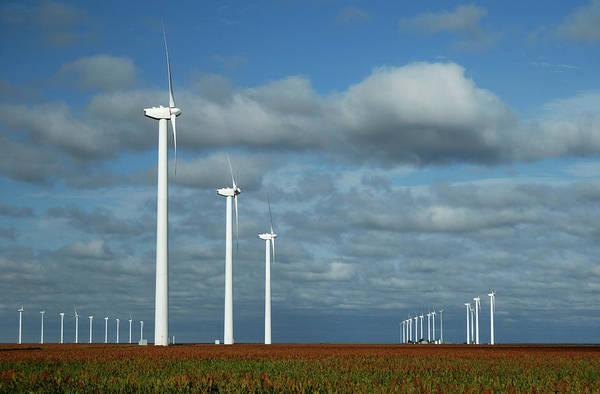 Texas A Photograph - Wind Turbines Near White Deer, Texas by Myloupe/uig