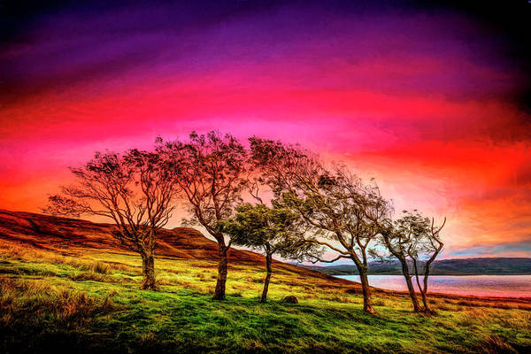 Photograph - Windblown On The Edge Of Sunset Painting by Debra and Dave Vanderlaan