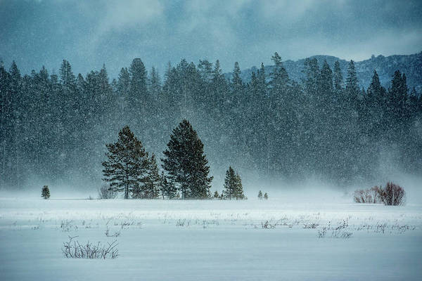Luther Photograph - Windblown Snow by Dan Holmes