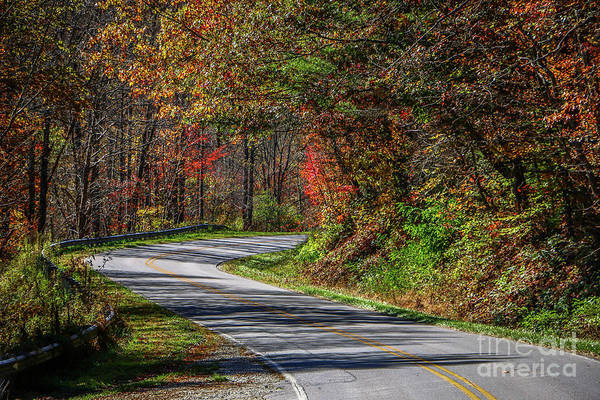 Photograph - Winding Autumn Road by Tom Claud