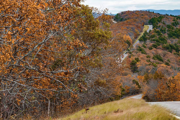Photograph - Winding Autumn Roads Of The Talimena Scenic Byway by Gregory Ballos
