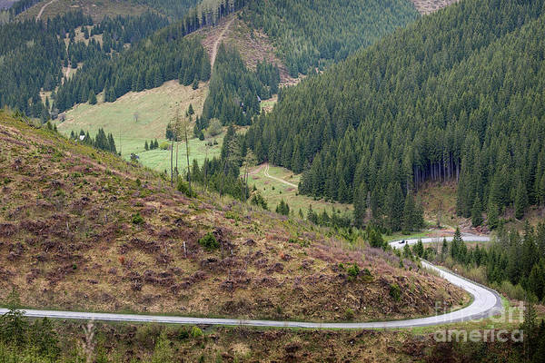 Photograph - Winding Mountain Road by Les Palenik
