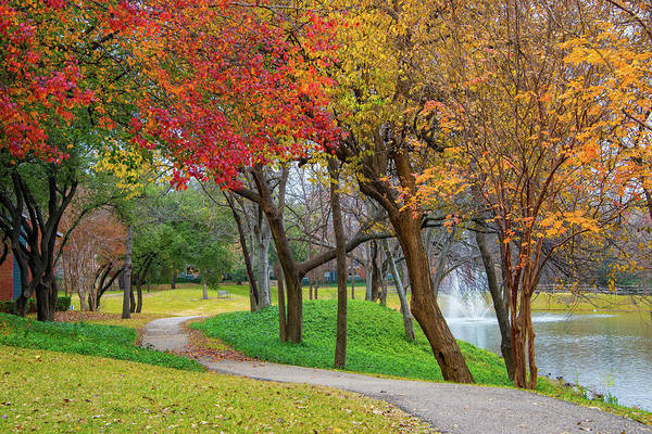 Photograph - Winding Through Fall In Dallas by Lynn Bauer