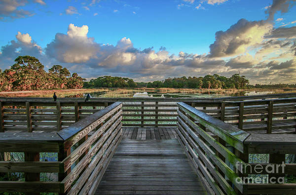 Photograph - Winding Waters Observation Deck by Tom Claud