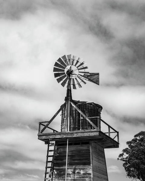 Photograph - Windmill Cayucos California Bw by David Gordon
