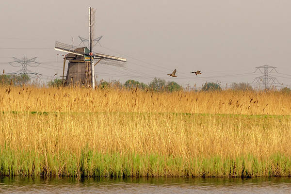 Photograph - Windmill In A Golden Field by Wolfgang Stocker