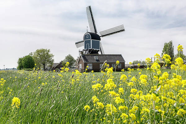 Photograph - Windmill In The Field by Wolfgang Stocker