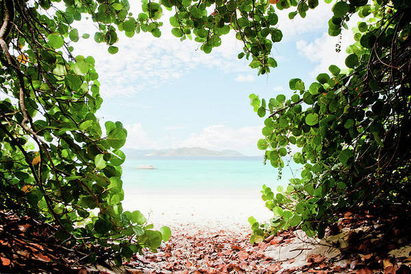 British Virgin Islands Photograph - Window Beach by M Swiet Productions