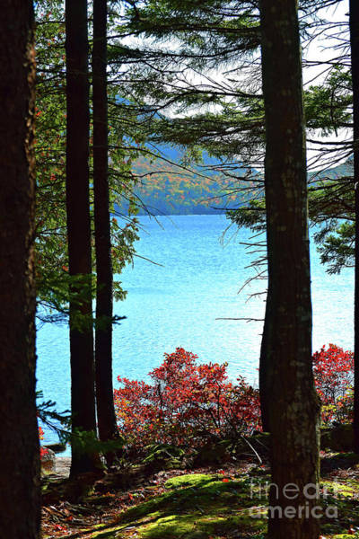 Photograph - Window To Eagle Lake Two by Patti Whitten