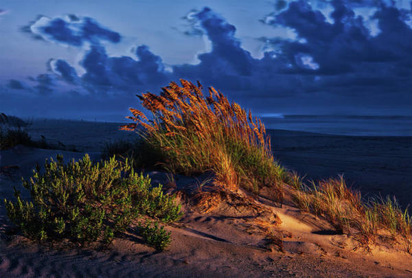 Wall Art - Photograph - Windswept Beach by Dan Carmichael