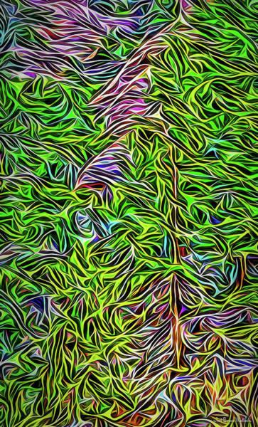Digital Art - Windswept Mountain Pines by Joel Bruce Wallach
