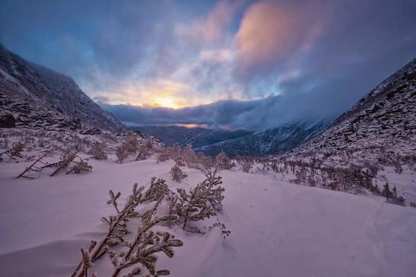 Photograph - Windswept, Spring Sunrise In Tuckerman Ravine by Jeff Sinon