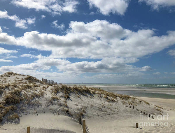 Photograph - Windy Day At The Beach by Michelle Constantine