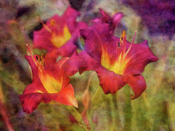 Photograph - Wine 4756 Idp_2 by Steven Ward