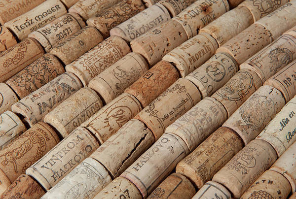 Photograph - Wine Corks by Helen Northcott
