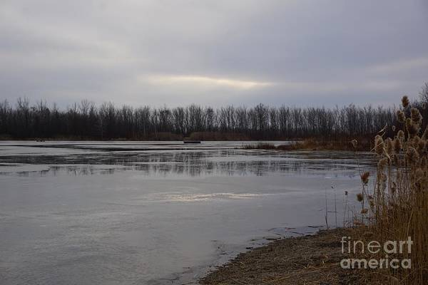 Wall Art - Photograph - Winter Afternoon by David Boudreau