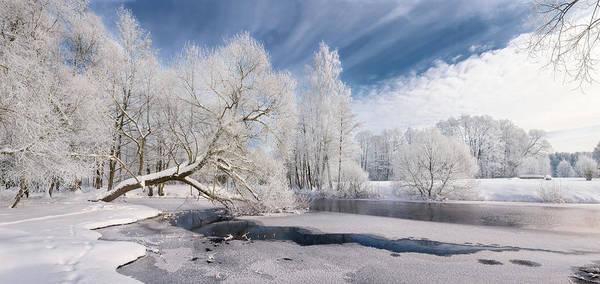 Photograph - Winter Afternoon by Vlad Sokolovsky