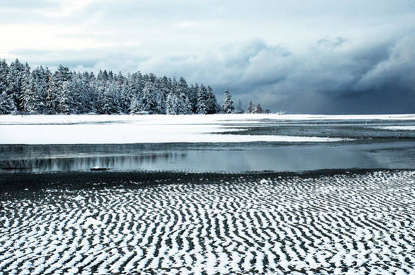 Wall Art - Photograph - Winter At The Beach 2 by Bob Christopher