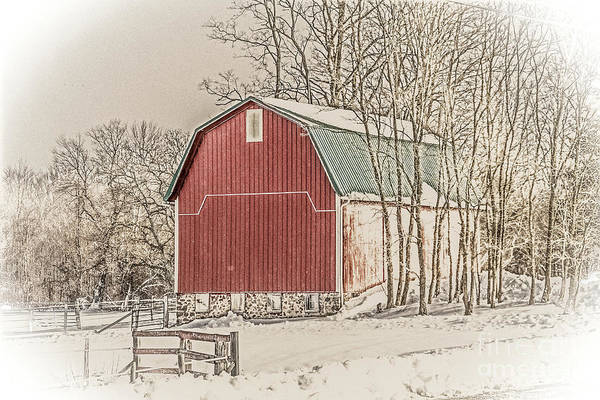 Wall Art - Photograph - Winter Barn by William Norton