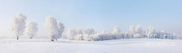 Remote Photograph - Winter Beautiful Landscape With Trees by Alex po