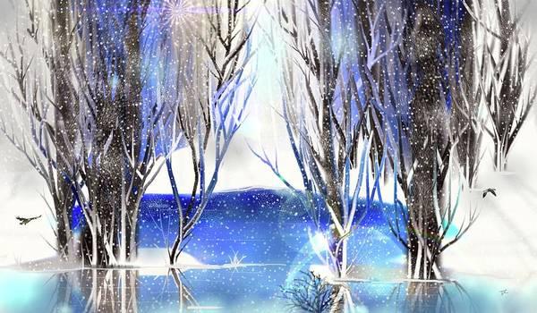 Digital Art - Winter Beauty by Darren Cannell