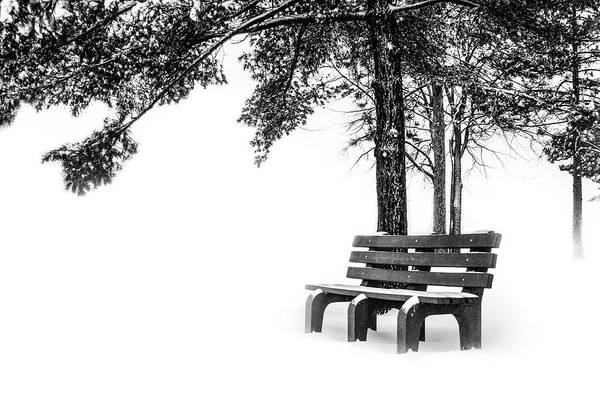 Photograph - Winter Bench  by Michael Arend