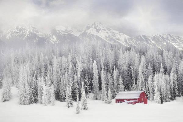 Wall Art - Mixed Media - Winter Blessings by Lori Deiter