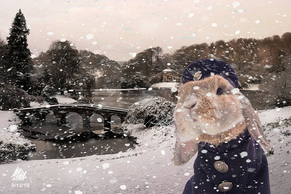 Stourhead Wall Art - Digital Art - Winter Bunny by Mel Beasley