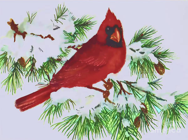 Digital Art - Winter Cardinal by D Hackett
