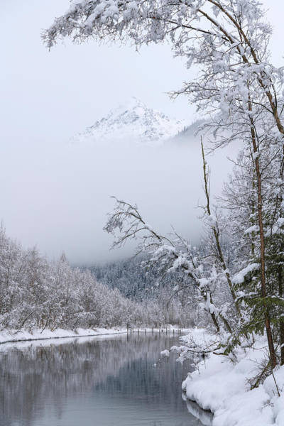 Wall Art - Photograph - Winter by Chad Dutson