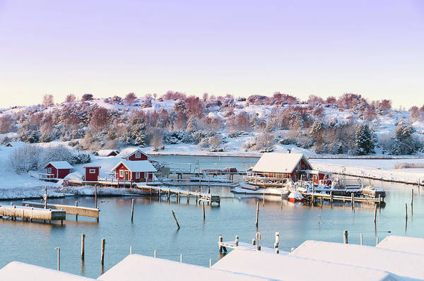 Sport Fishing Photograph - Winter Coastal Cottages by Martin Wahlborg