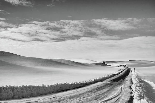 Photograph - Winter Country Road Black And White by Tatiana Travelways
