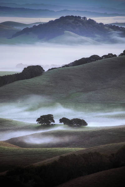 Wall Art - Photograph - Winter Country, Sonoma by Vincent James