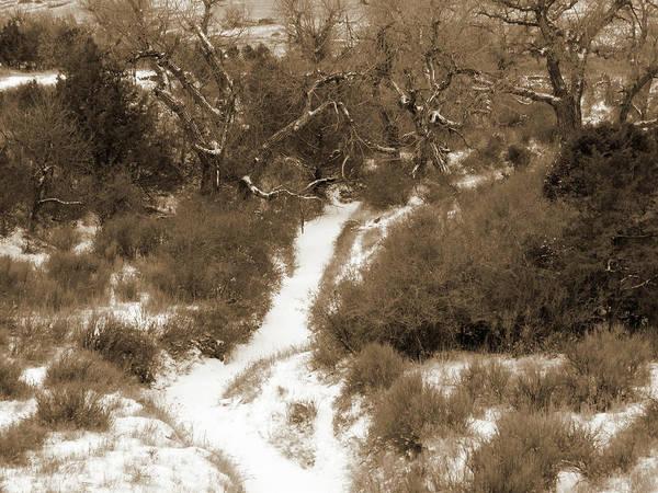 Photograph - Winter Crick by Cris Fulton